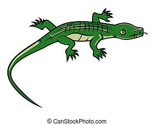 lizard cartoon vector Illustration