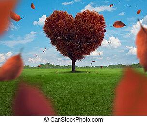 Coração, árvore