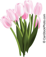 Tulip bouquet - Colorful tulip bouquet Objects can be easily...