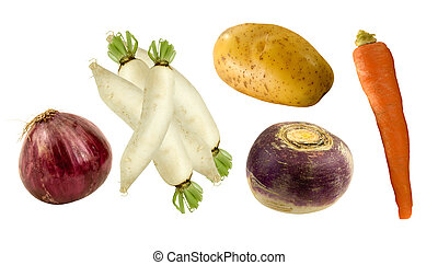 fresh root vegetables - onion, daikon,potato,turnip and...