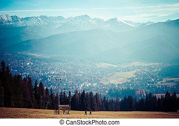Green valley in the high Tatra mountains in Zakopane,...