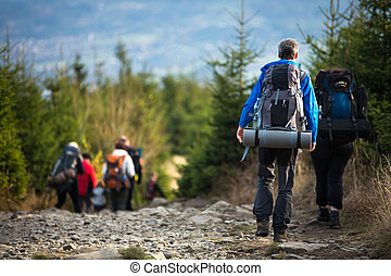 People hiking - goiing down a lovely alpine path
