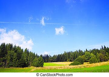 Great nature landscape