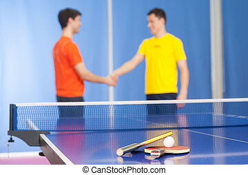 Good game! Two young men in sports clothing handshaking near...