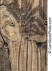Old Cracked Rough Textured Plank With Knot And Rusty Screws...