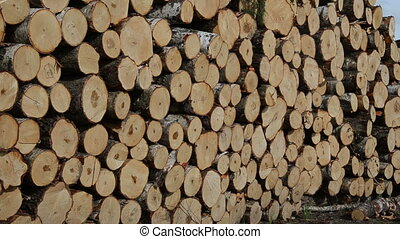 firewood wood logs fuel - Panorama of firewood cut tree...