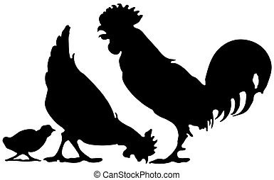 chicken family - Silhouette of a chicken family Lossless...