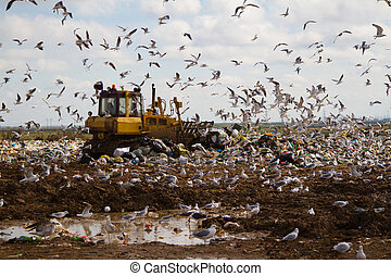 Landfill rubbish bulldozers processing garbage - Shot of...