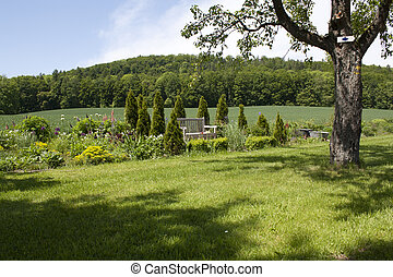 landscape - Bench between bushes in a peaceful countryside