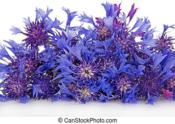 Cornflower bouquet isolated on white