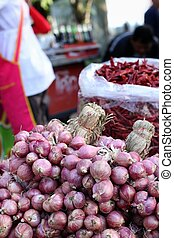 Shallot - asia red onion