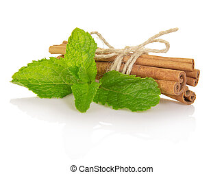Spearmint with cinnamon isolated on white.