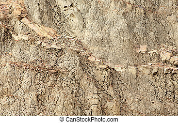 Texture of clay, background
