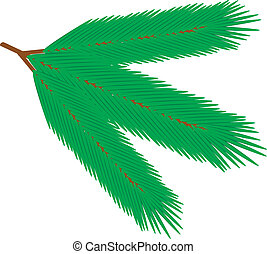 Fur tree branch - vector illustration