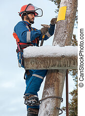 Electrician working on a power line pole - Electrician in...