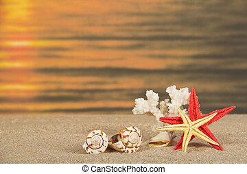 Starfishes, cockleshells and coral against a romantic...