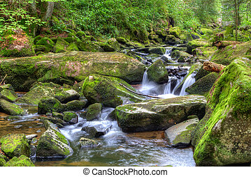 Torrent in the Bavarian Forest Germany, Europe