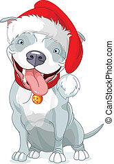 Christmas Pit Bull Dog