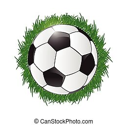 soccer ball and grass illustration design over white