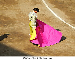 Bullfighter in the ring. brave matador with capote. dress in...