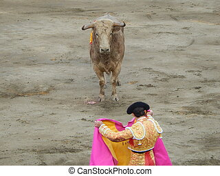 de, stier, Starende blikken, torero, gedurende, Bullfight