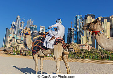 Arab man sitting on a camel on the beach in Dubai