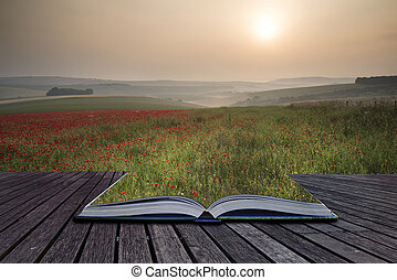 Creative concept pages of book Beautiful Summer sunrise countryside field of poppies landscape