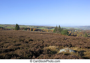 moorland vista - a beautiful moorland vista with heather...