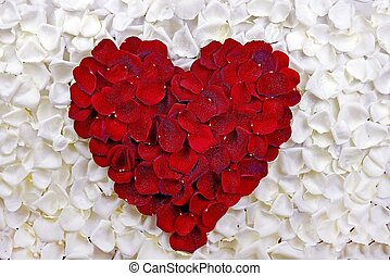 Rose Petals Heart Red Petals Heart on White Rose Petals...
