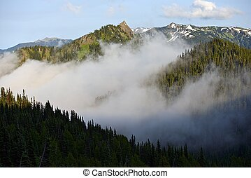 Olympic Range - Olympic Mountains Range in Fog. Olympic...
