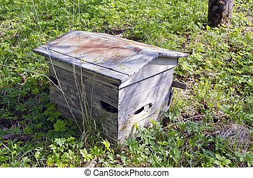 old weathered wooden bee hive in garden