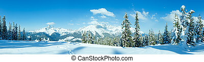 Winter mountain panorama with snowy trees Filzmoos, Austria...