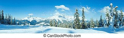 Winter mountain panorama with snowy trees (Filzmoos,...