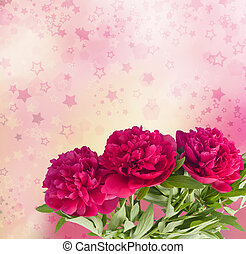 Beautiful bouquet of pink peonies on the abstract background...