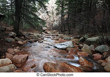 Colorado Springs Mountain Forest. Colorado Springs, USA