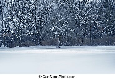 Midwest Winter Landscape - MIdwest Winter Landscape Land...