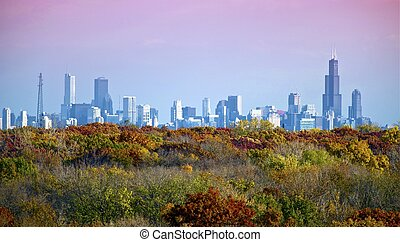 Chicago Skyline with Colorful Trees Below Photo taken from...