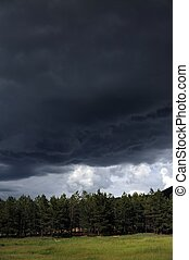 Approaching Storm. Angry Dark Sky Over Colorado Forest.