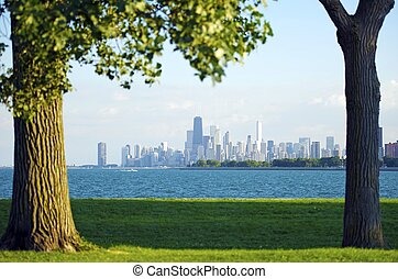 Chicago and Lake Michigan. Grassy Field and Old Trees on the...