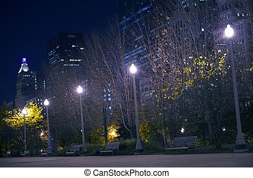 Downtown Park. Millennium Park in the Heart of Chicago. Park...