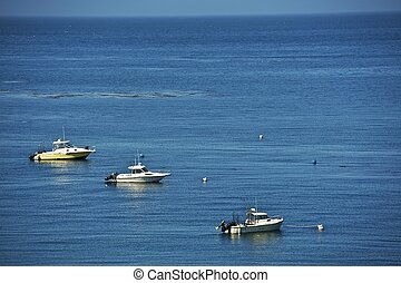 Fishing Motorboats - Three Fishing Motorboats on the Ocean -...