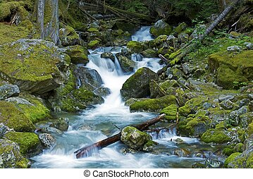 North Cascades Creek - North Cascades National Park -...