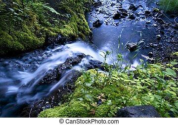 Lovely Creek