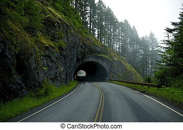 Road Tunnel - Mountain Tunnel in Washington State near Port...