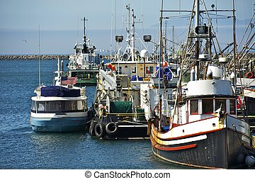 Small Pacific Harbor - Washington State, USA Small Aged...