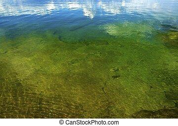 Lake Shallow Water - Yellowstone Lake Shallow Water....