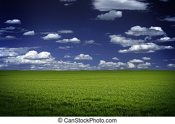 Green Field and Blue Sky - Open Grassland and Dark Blue...