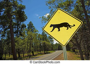 Cougar Crossing - Mountain Lion Xing Traffic Sign in...