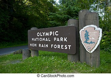 Hoh Rain Forest - Olympic National Park, Hoh Rain Forest...