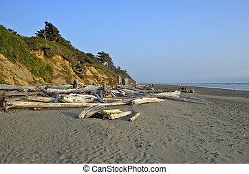 North California Beach Landscape Pacific Ocean Sandy Shore...